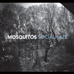 MOSQUITOS, Socialhaze