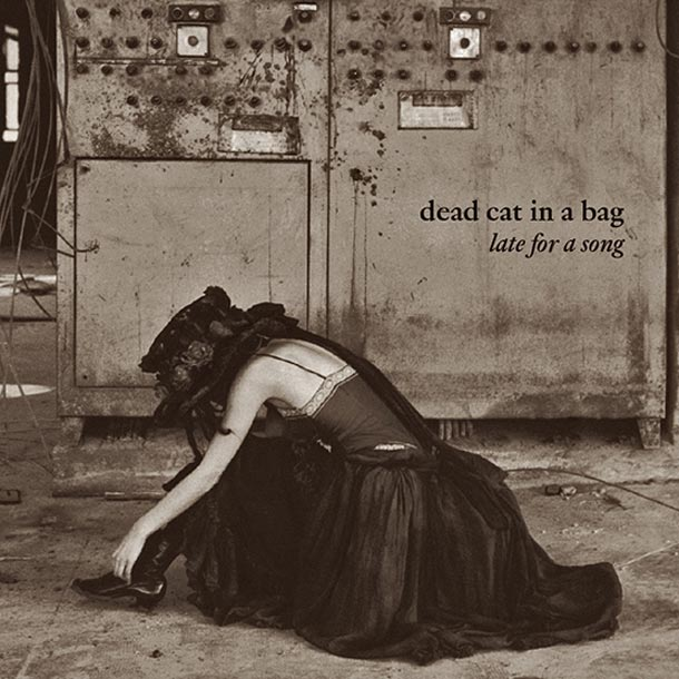 Dead Cat In A Bag