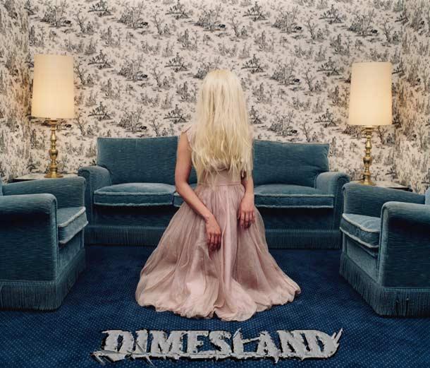Dimesland