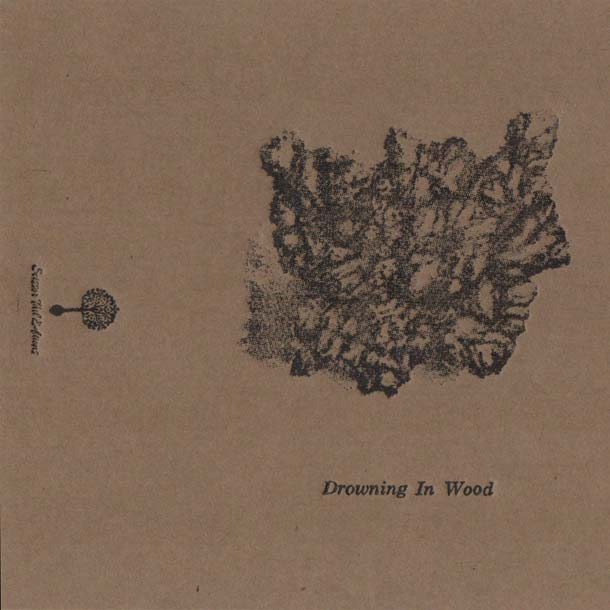 DROWNING IN WOOD, S/t