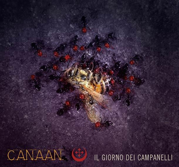 canaan1