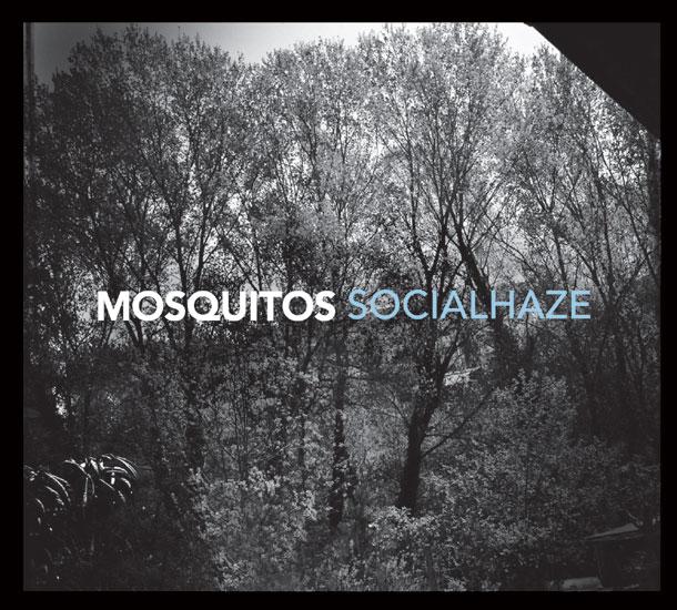 Socialhaze1