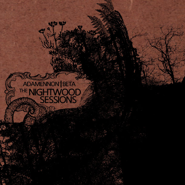 The Nightwood 2