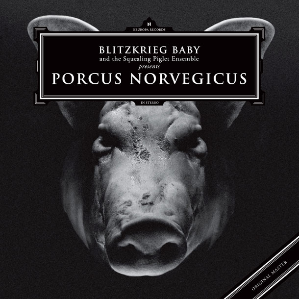Porcus Norvegicus
