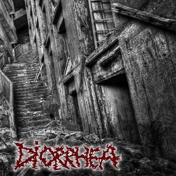 Diorrhea