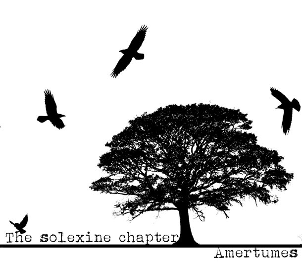 The Solexine Chapter