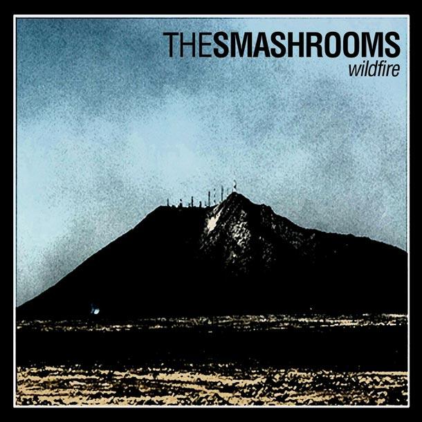 The Smashrooms