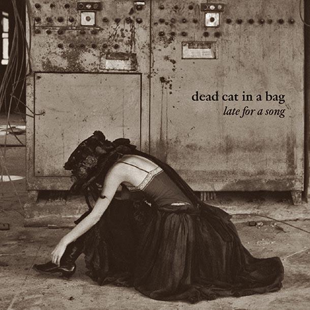 Dead Cat In A Bag