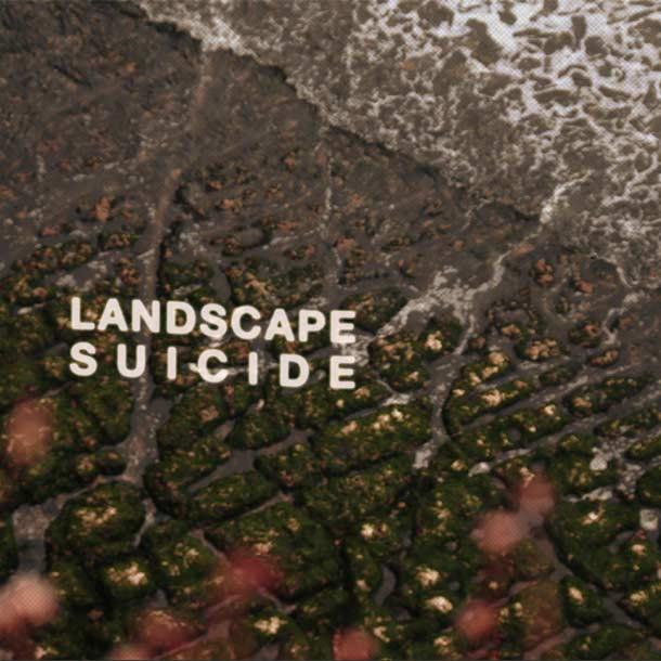 Landscape Suicide1