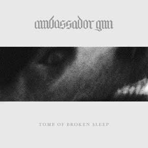 Ambassador Gun1