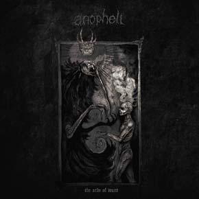 Anopheli1