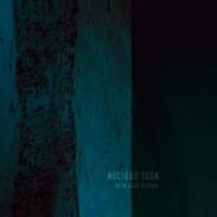 Nucleus Torn1