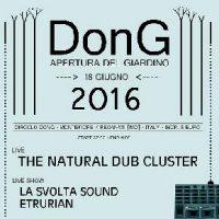 Dong2