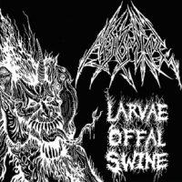larvae2