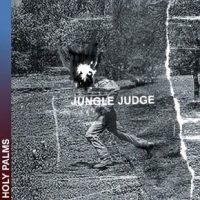 jungle judge2