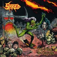 shred2
