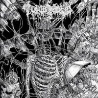 tomb mold2
