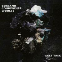 Salt Task1