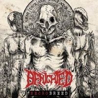 benighted2