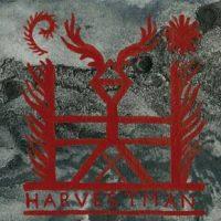 harvestman2
