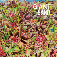 Giant Sand