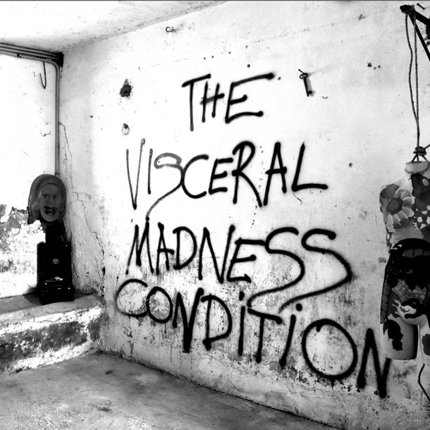 THE VISCERAL MADNESS CONDITION, The Visceral Madness Condition