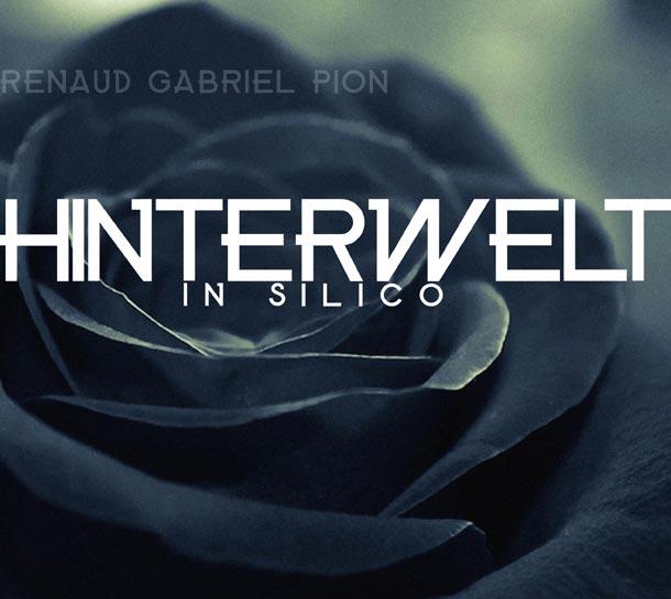 RENAUD GABRIEL PION, Hinterwelt In Silico